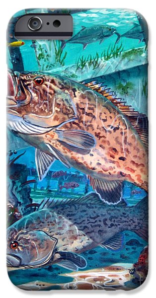 Goliath iPhone Cases - Gag Grouper In0030 iPhone Case by Carey Chen