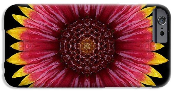 David J Bookbinder iPhone Cases - Galliardia Arizona Sun Flower Mandala iPhone Case by David J Bookbinder