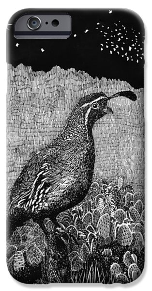 Colorado Drawings iPhone Cases - Gamblels Quail Lucy in the sky iPhone Case by Jack Pumphrey