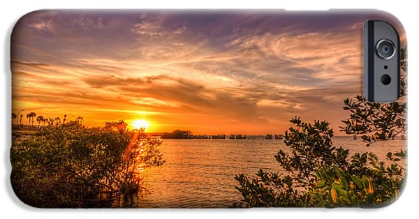 Mangrove iPhone Cases - Gandy Sunset iPhone Case by Marvin Spates