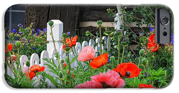 Cabin Window iPhone Cases - Garden at the Cabin iPhone Case by Priscilla Burgers