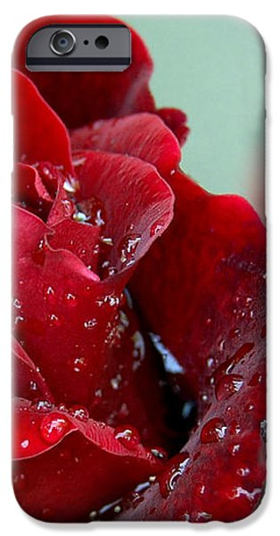 Garden Bouquet iPhone Case by Steven Milner