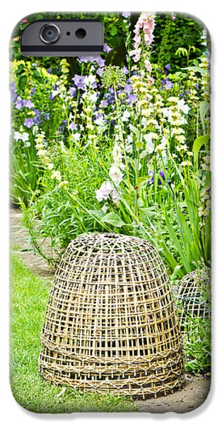 Basket iPhone Cases - Garden decoration iPhone Case by Tom Gowanlock