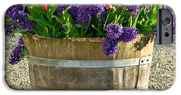 Senetti iPhone Cases - Garden in a bucket iPhone Case by Eti Reid