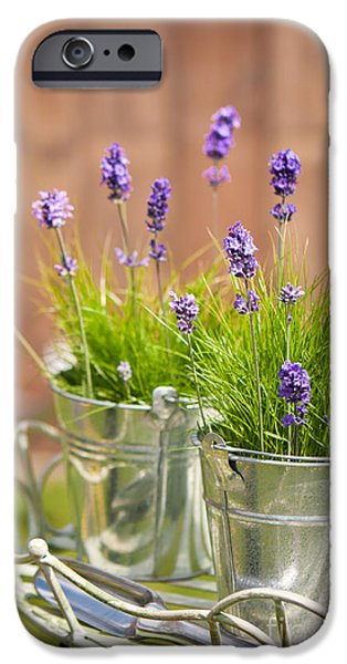 Flowerpot iPhone Cases - Garden Lavender iPhone Case by Amanda And Christopher Elwell