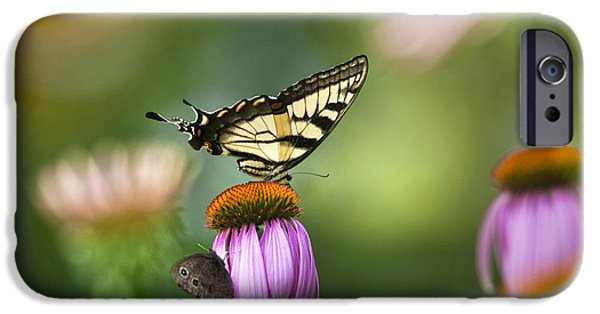 Butterfly Garden iPhone Cases - Garden Rainbow Butterfly iPhone Case by Christina Rollo
