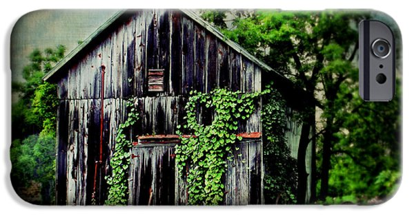 Shed iPhone Cases - Garden Shed iPhone Case by Perry Webster