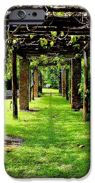 Garden Walkway iPhone Case by Carey Chen