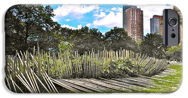 Bamboo Fence Digital iPhone Cases - Garden with Bamboo Garden Fence in Battery Park in New York City-NY iPhone Case by Ruth Hager