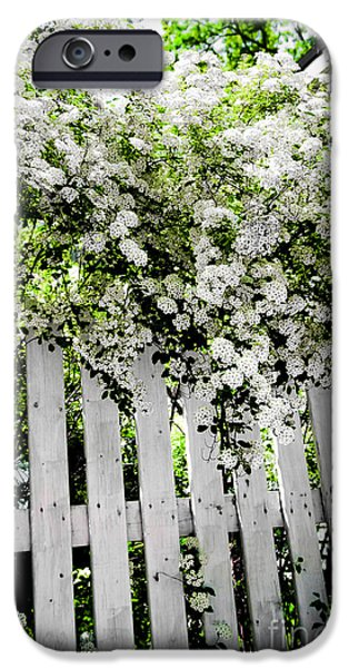 Wreath iPhone Cases - Garden with white fence iPhone Case by Elena Elisseeva