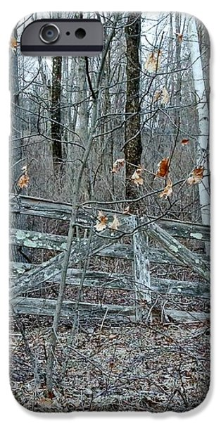 Gate and Birches iPhone Case by Randi Shenkman