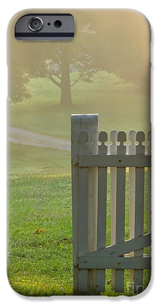 Gate in Morning Fog iPhone Case by Olivier Le Queinec