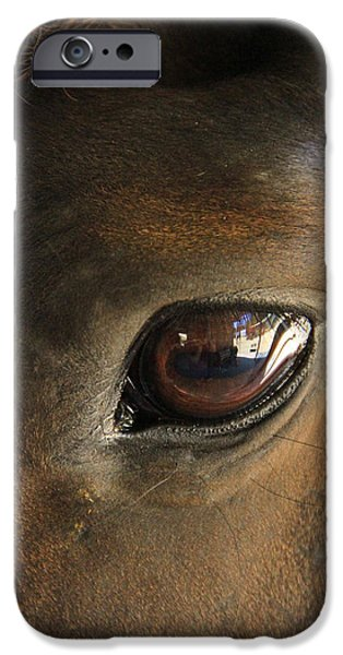 Horse Pyrography iPhone Cases - Gateway to a horses soul iPhone Case by Shoal Hollingsworth