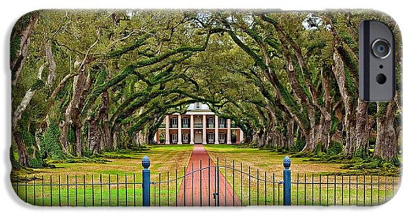 Oak Alley Plantation iPhone Cases - Gateway to the Old South iPhone Case by Steve Harrington