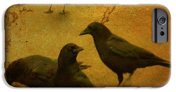 Crows iPhone Cases - Gathering iPhone Case by Gothicolors Donna Snyder