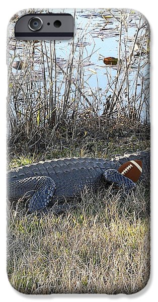 Gator Football iPhone Case by Al Powell Photography USA