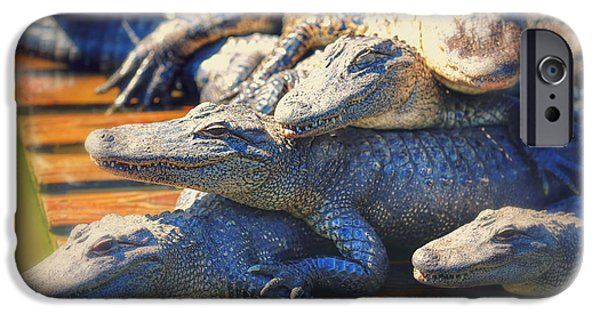 Florida Gators iPhone Cases - Gator Pals iPhone Case by Carol Groenen