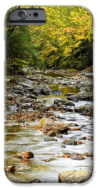 West Fork iPhone Cases - Gauley River Headwaters iPhone Case by Thomas R Fletcher