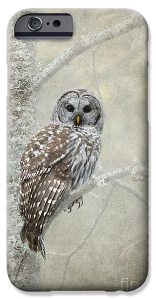 Winter iPhone Cases - Gaurdian of the Woods iPhone Case by Reflective Moment Photography And Digital Art Images