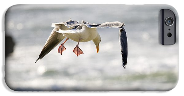 Flying Seagull iPhone Cases - Gear Down iPhone Case by Alexey Stiop