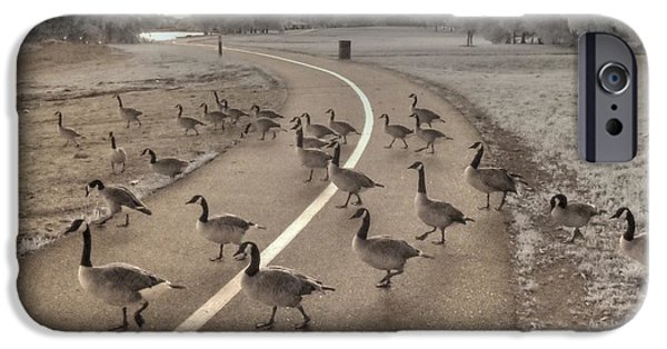 Geese iPhone Cases - Geese Crossing iPhone Case by Jane Linders