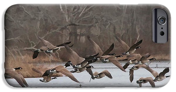 Geese iPhone Cases - Geese in Flight iPhone Case by Heidi Piccerelli