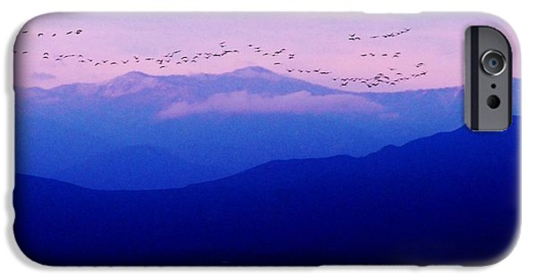 Youthful iPhone Cases - Geese in s Pink Sky iPhone Case by Leo Sopicki