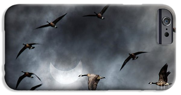Solar iPhone Cases - Geese in Solar Eclips iPhone Case by Rebecca Cozart