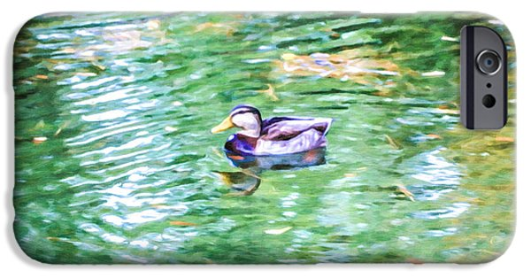 Canadian Geese Paintings iPhone Cases - Geese swim in the water iPhone Case by Lanjee Chee