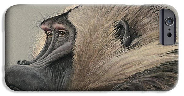 Ethiopia iPhone Cases - Gelada Baboon iPhone Case by Louis Agassiz Fuertes