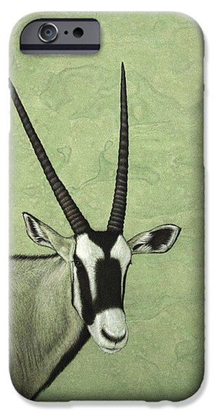 African Animal Drawings iPhone Cases - Gemsbok iPhone Case by James W Johnson