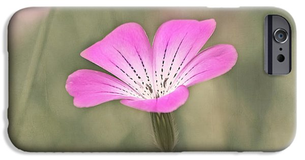 Innocence iPhone Cases - Gentility iPhone Case by Kim Hojnacki