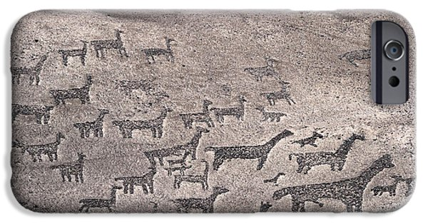 Llama iPhone Cases - Geoglyphs at Tiliviche Chile iPhone Case by James Brunker
