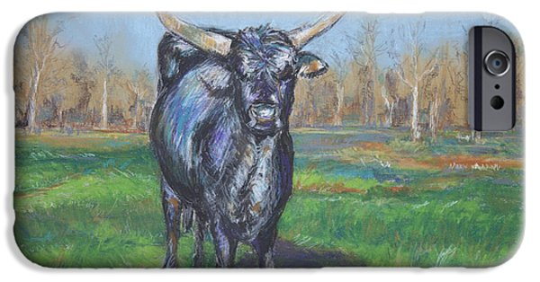 Bulls Pastels iPhone Cases - George iPhone Case by Deb Miller