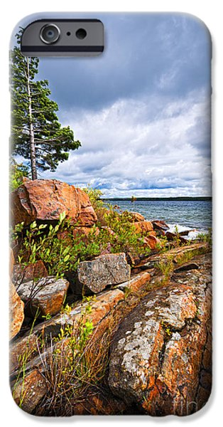 Pines iPhone Cases - Georgian Bay iPhone Case by Elena Elisseeva