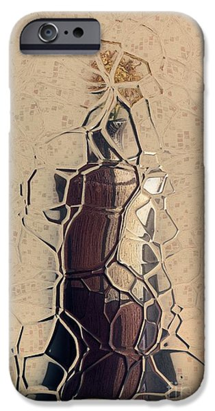 Abstract Realism iPhone Cases - Geovase - ab01a - Abstract iPhone Case by Variance Collections