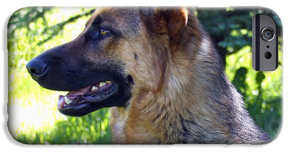 Working Breed iPhone Cases - German Shepherd Dog Female iPhone Case by Karon Melillo DeVega