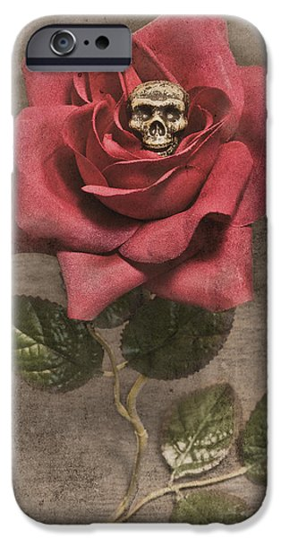 Strange iPhone Cases - Germination iPhone Case by Jeff  Gettis