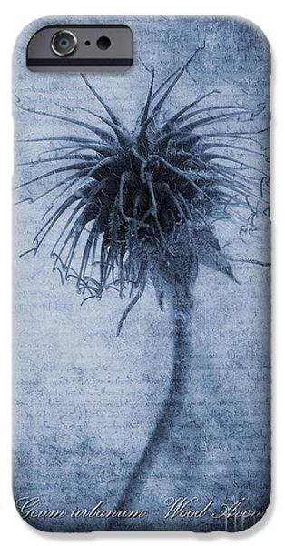 Benedict iPhone Cases - Geum urbanum Cyanotype iPhone Case by John Edwards