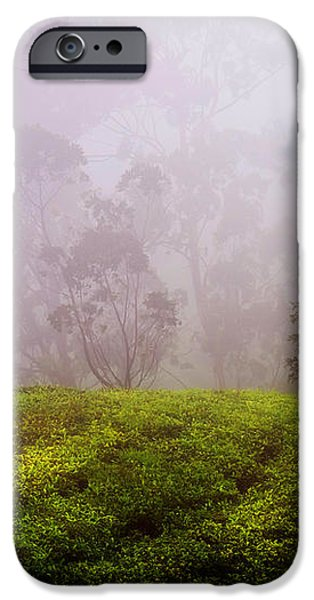 Ghost Tree in the Haunted Forest. Nuwara Eliya. Sri Lanka iPhone Case by Jenny Rainbow