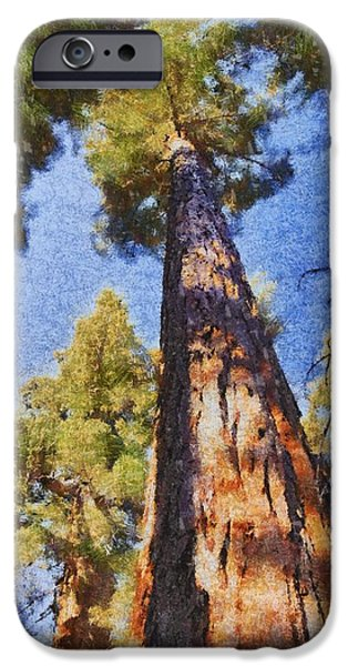 Tree Roots iPhone Cases - Giant Sequoia Pastel iPhone Case by Barbara Snyder