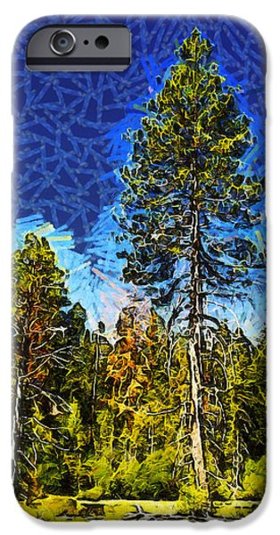 Tree Roots iPhone Cases - Giant Tree Abstract iPhone Case by Barbara Snyder