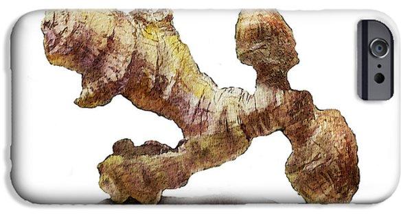 Nature Study Paintings iPhone Cases - Ginger   iPhone Case by Irina Sztukowski