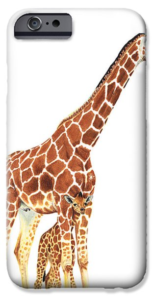 Safari Prints iPhone Cases - Giraffe Art - A Mothers Love - By Sharon Cummings iPhone Case by Sharon Cummings