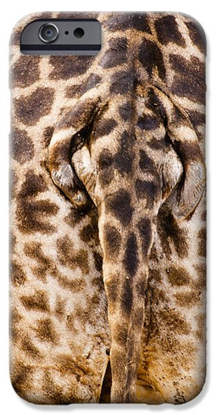 Nature Study iPhone Cases - Giraffe Butt iPhone Case by Adam Romanowicz