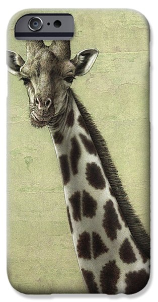 African Animal Drawings iPhone Cases - Giraffe iPhone Case by James W Johnson
