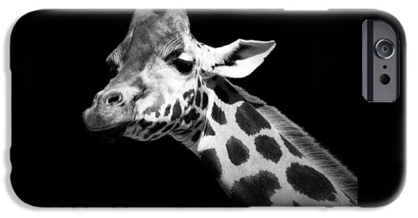 Animals Photographs iPhone Cases - Portrait of Giraffe in black and white iPhone Case by Lukas Holas