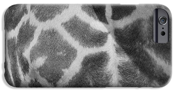 Giraffe Abstract iPhone Cases - Giraffe Pattern Black And White iPhone Case by Dan Sproul