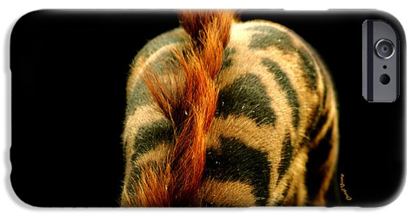 Giraffe Abstract iPhone Cases - Giraffe Patterns iPhone Case by Cheryl Young