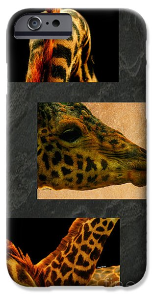 Giraffe Abstract iPhone Cases - Giraffe Triptych iPhone Case by Cheryl Young